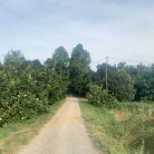 bán gấp lô đất vì cần tiền gấp có dt 12,5ha wiu đẹp có ao hồ trong đất tại hợp thanh tân thanh lương sơn hòa bình Khu vực :Bán đất nền dự án tại Huyện Lương Sơn Hòa Bình
