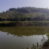 Cần bán 30ha đất Kỳ Sơn Hòa Bình phù hợp trồng cây dược liệu,đường to gần QL6