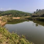 Cần bán gấp  30ha đất Kỳ Sơn Hòa Bình phù hợp trồng cây dược liệu,đường to gần QL6
