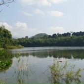 chính chủ gửi bán gấp bán nhanh lô đất có DT 2450m tại xã minh quang ba vì hà nội ,đất bám hồ tuyệt đẹp Khu vực :bán đất 50 năm tại Huyện Ba Vì Hà Nội