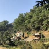 Bán đất Tân Vinh, Lương Sơn, Hòa Bình. Đất phẳng, có ao, có đồi thấp thoải, có nhà ở sẵn.