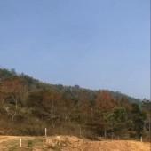 Bán 720m đất dự án sinh thái nghỉ dưỡng tại Kỳ Sơn-Hòa Bình