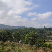 Bán đất thị trấn Lương Sơn, Hòa Bình. Sẵn vườn cây ăn quả. Cách HN chỉ 36km.