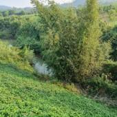 Bán đất Cao Răm, Lương Sơn, Hòa Bình. Cách HN 45km. Phù hợp làm sinh thái, nghỉ dưỡng,...