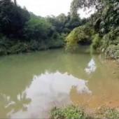 Bán đất Cao Răm, Lương Sơn. Địa thế tựa sơn đạp thủy, nằm trên tuyến đường du lịch, sinh lời cao.