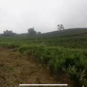 Bán đất Liên Sơn, Lương Sơn, Hòa Bình. View hồ cực đẹp. LH: 0988681666