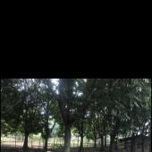 Bán đất Lộc Môn, Trung Sơn, Lương Sơn, Hòa Bình. Cách đường HCM chỉ 100m.