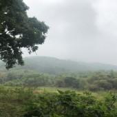 Bán đất Suối Rè, Cư Yên, Lương Sơn, Hòa Bình. Bờ bao xung quanh, trong đất có cây ăn quả.