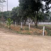 Bán đất Lương Sơn-Hòa Bình 5489m đất thổ cư nhà vườn giá rẻ cho các nhà đầu tư