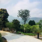 Bán đất tại Yên Bài Ba Vì Hà  Hà Nội diện tích 1800m2