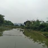 Bán đất tại Cao Dương, Lương Sơn, Hòa Bình. Bám hồ nhỏ. Đất phẳng. Bám đường chính liên xã.