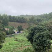 Bán đất phù hợp làm trang trại, nghỉ dưỡng tại xóm mòng, thị trấn lương sơn, lương sơn, hoà bình