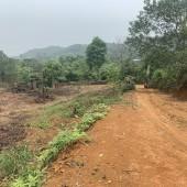 Bán đất tại xã Yên Bài Ba Vì Hà Nội diện tích 2200m2.